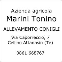 Azienda agricola Marini Tonino