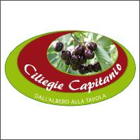 Azienda Agricola Capitanio Biagio