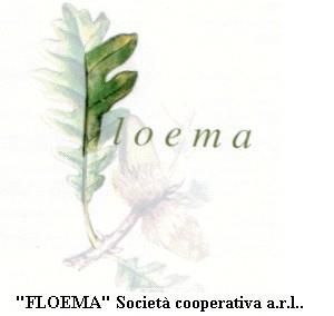 Cooperativa Floema