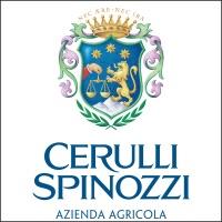 Azienda Agricola Cerulli Spinozzi