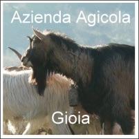 Azienda Agricola Gioia