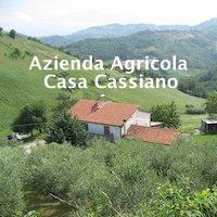 Azienda Agricola Casa Cassiano