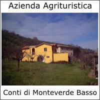 Azienda Agrituristica Conti di Monteverde Basso
