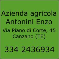 Azienda Agricola Antonini Enzo