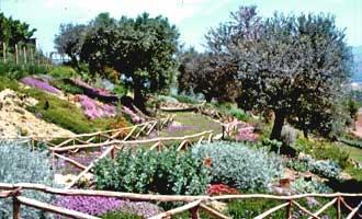 Il Giardino Officinale Di Morro D 39 Oro Valle Delle Abbazie